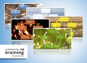 Multiaktorisches-Training-Bildpraesentation03-300x220-web